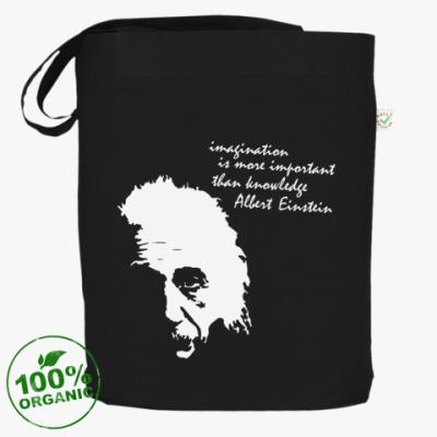 Сумка Эйнштейн