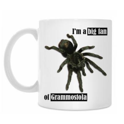 Кружка Grammostola