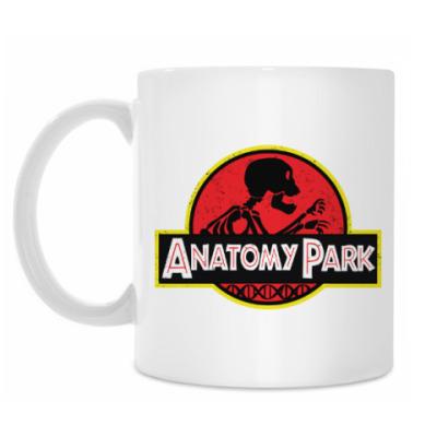 Кружка Anatomy Park