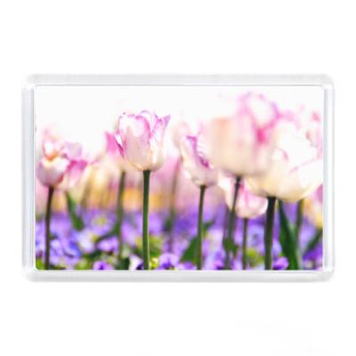 Магнит Полевые тюльпаны