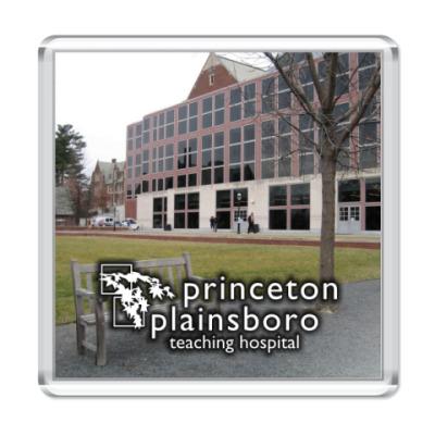 Магнит  Princeton plainsboro