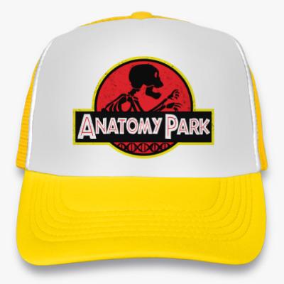Кепка-тракер Anatomy Park