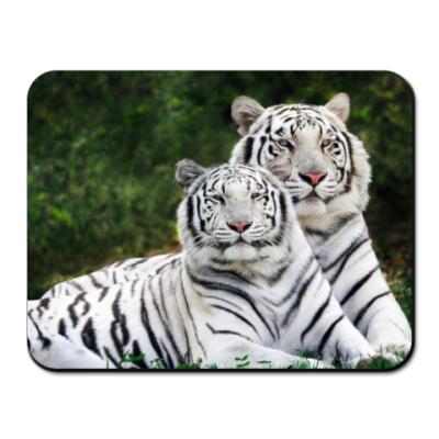 Коврик для мыши белые тигры