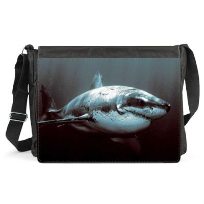 Сумка Shark