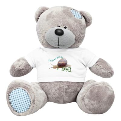 Плюшевый мишка Тедди улитка