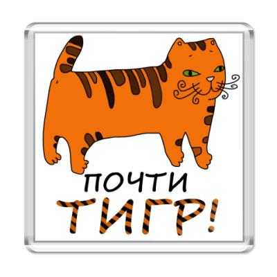 Магнит Почти тигр!