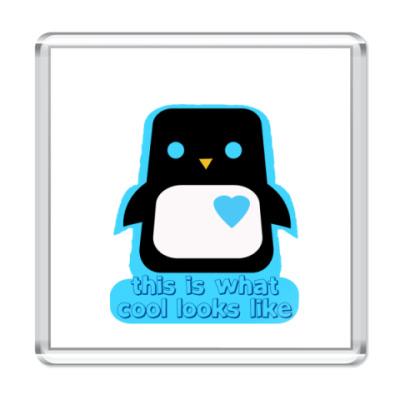 Магнит   penguin