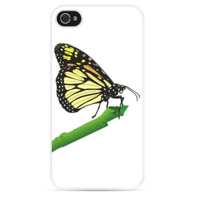 Чехол для iPhone Бабочка на ветке