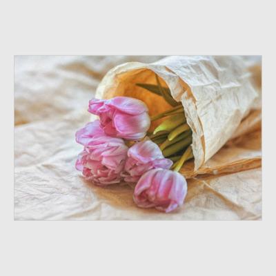 Постер тюльпаны в свёртке
