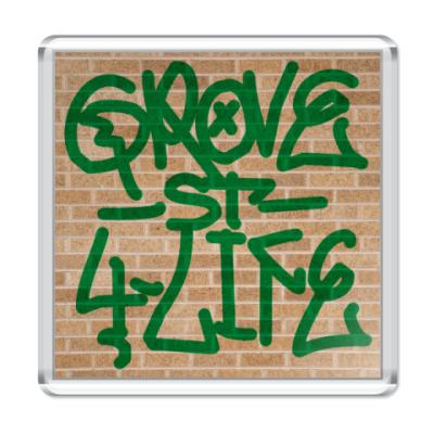 Магнит  Grove 4 Life