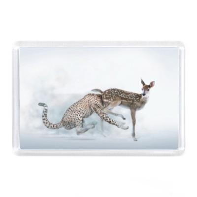 Магнит Лань и гепард