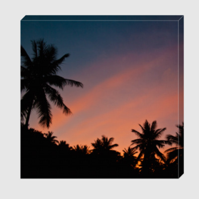 Холст Закат и пальмы / Palm sunset