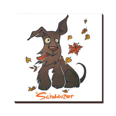 Осенний шнауцер