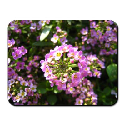 Коврик для мыши цветы