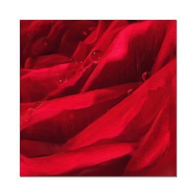 Наклейка (стикер) цвет розы
