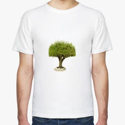 ''Trees''