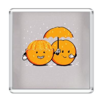 Магнит Апельсин