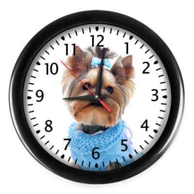Настенные часы Йорк