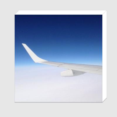 Холст Крыло самолета
