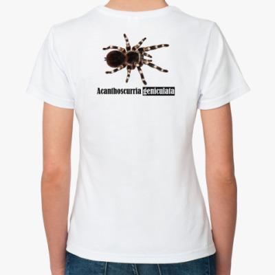 Классическая футболка Acanthos