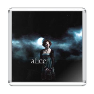 Магнит Alice Cullen