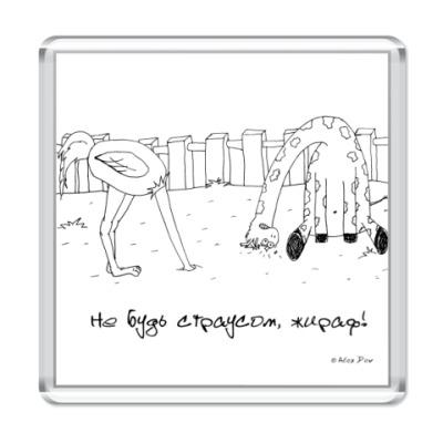 """Магнит  """"Эффект страуса"""""""