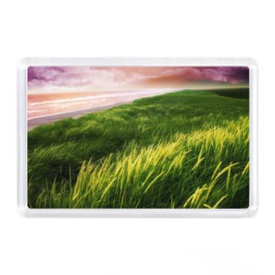 Магнит Зеленая травка