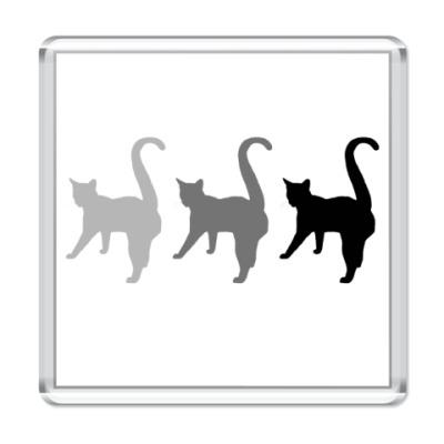 Магнит Три кота