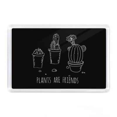 Магнит Plants are friends