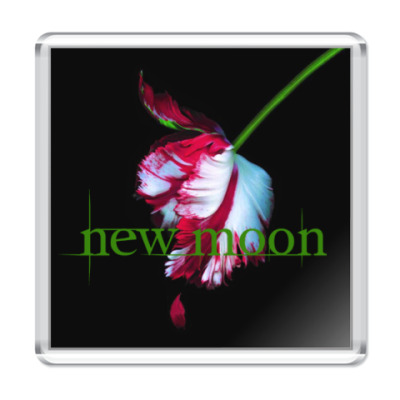 Магнит New moon flower