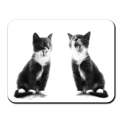 Коврик для мыши Две кошки