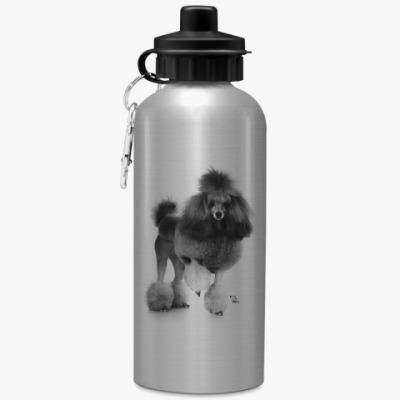 Спортивная бутылка/фляжка Пудель