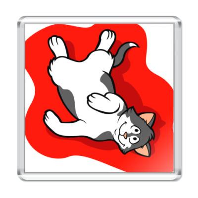 Магнит Эти веселые коты