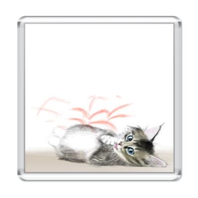 Магнит  Котёнок