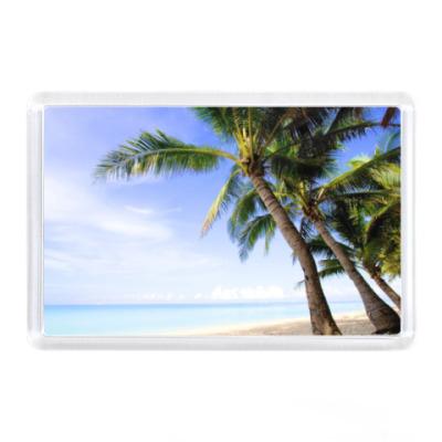 Магнит Остров, пальмы
