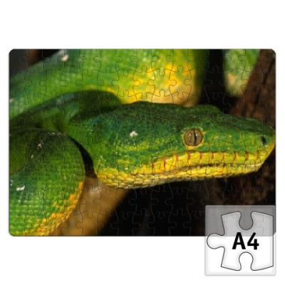 Пазл Змейка