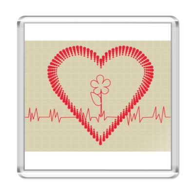 Магнит  кардиограмма