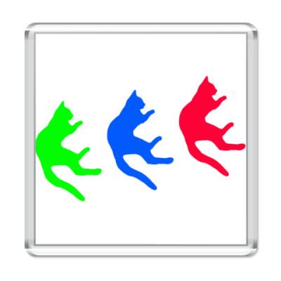 Магнит Падающие коты