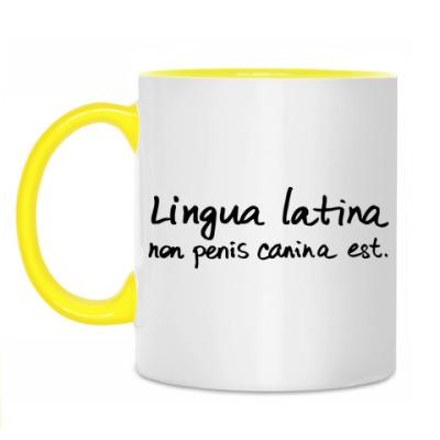 Кружка Lingua latina
