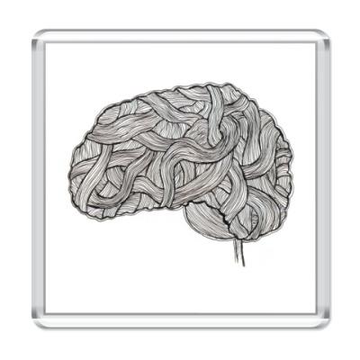 Магнит  «Мозг»