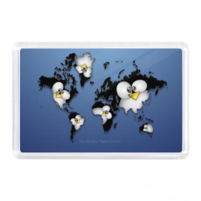 Магнит Карта мира