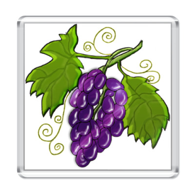 Магнит  Black Grapes