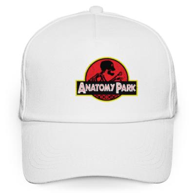 Кепка бейсболка Anatomy Park
