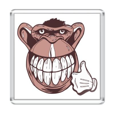 Магнит Веселая обезьяна