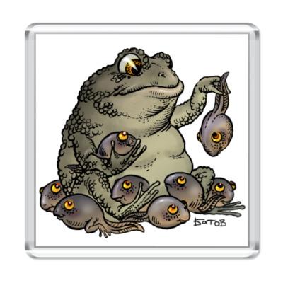 Магнит ToadsMama