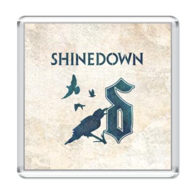 Магнит Shinedown