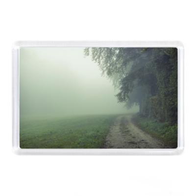 Магнит Дорога в лесу