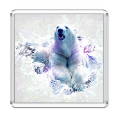 Магнит  Полярный медведь