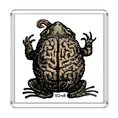 Магнит ToadsMind
