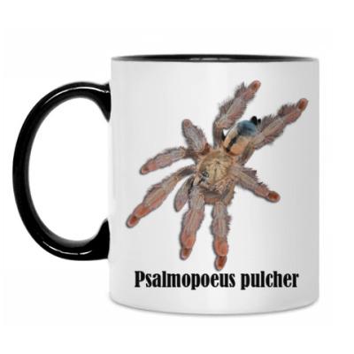 Кружка Pulcher